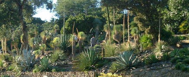 D co jardin exotique d eze saint paul 1811 jardin for Jardin luxembourg horaires